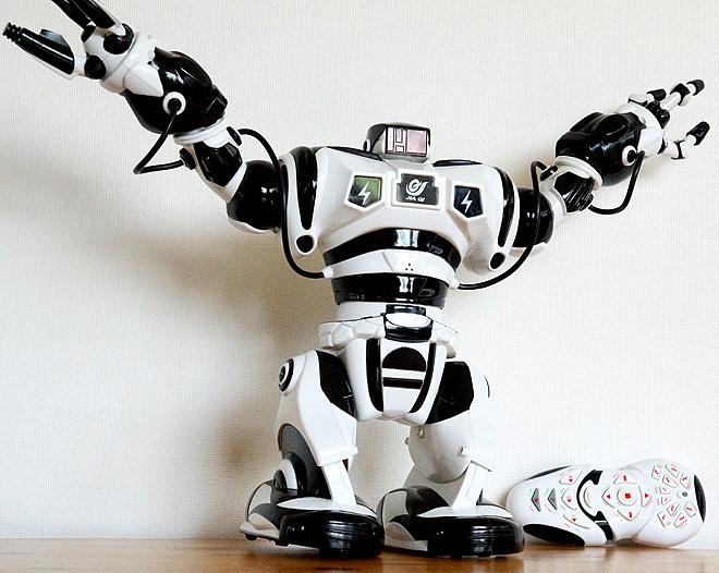 ROBONE-001.jpg