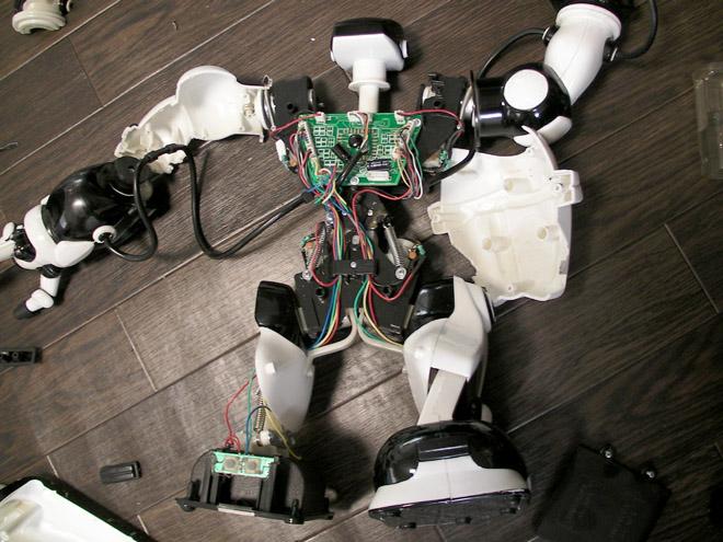 ROBONE-7.jpg