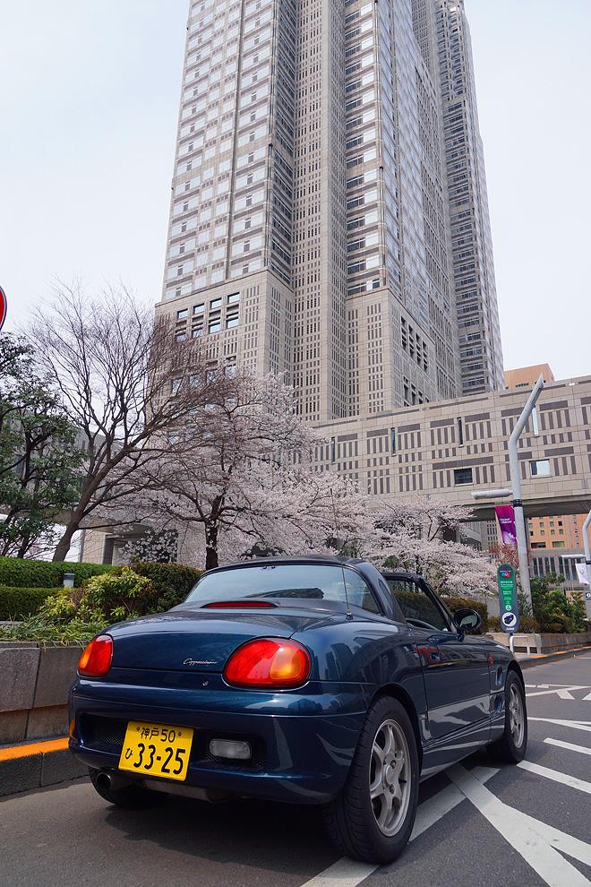 SAKURA_201304-29.jpg