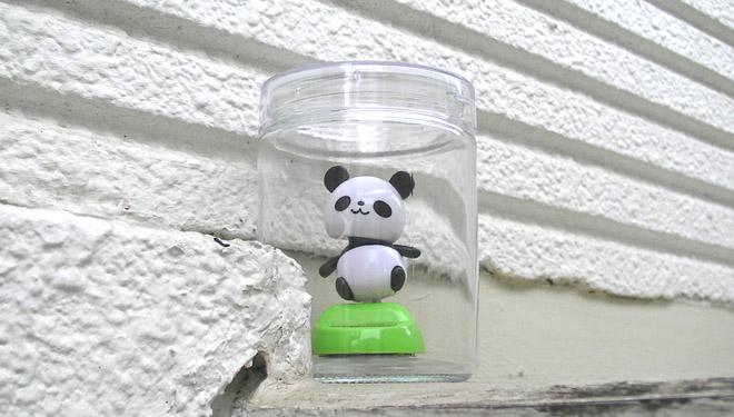 Solar-Panda.jpg